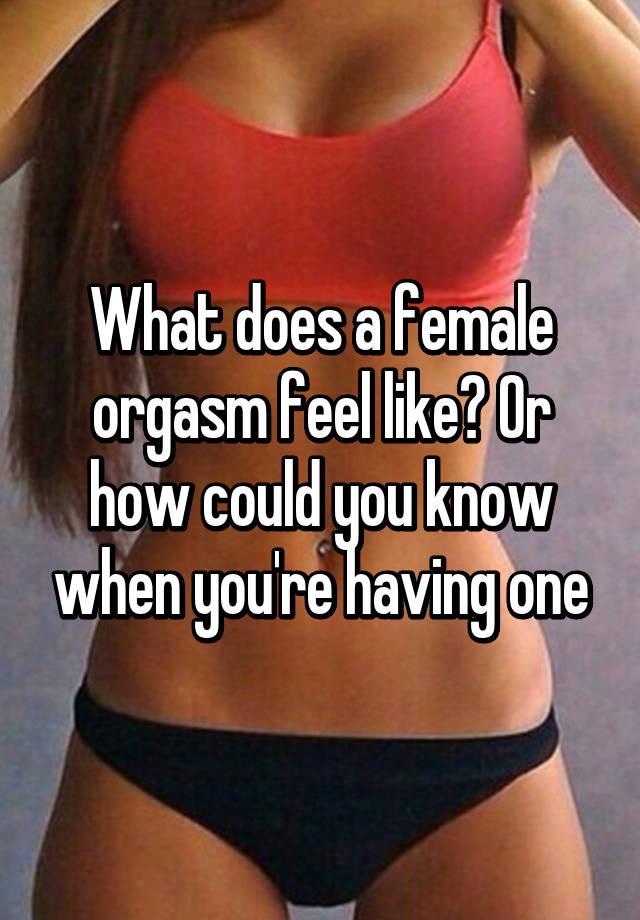 Chuck reccomend Female orgasm feel like
