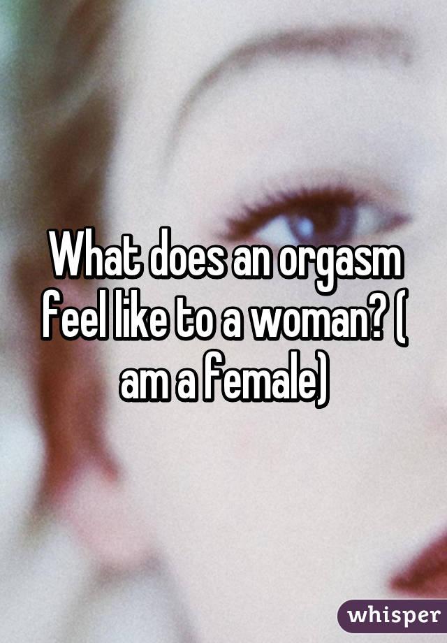 Female orgasm feel like
