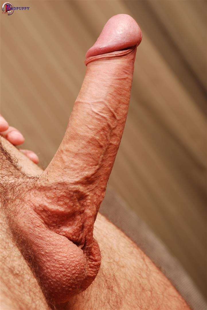 Big dick jerking porn